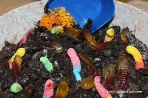 Dirt-Cake-with-Worms