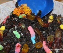 RCR Dirt Cake with Worms (4)