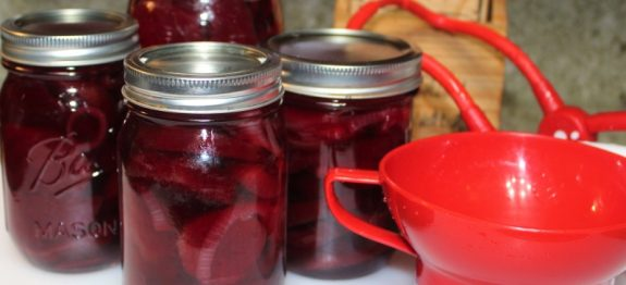 Pickled Beets with Onions
