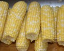 Freezing Corn on the Cob